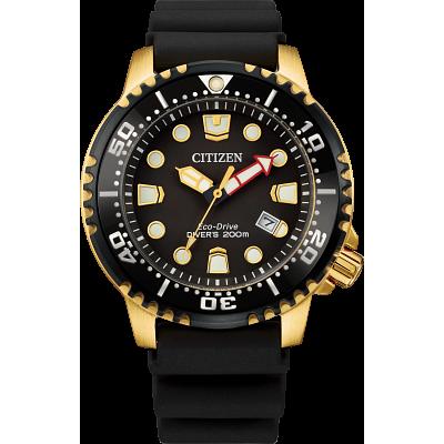 Promaster Diver